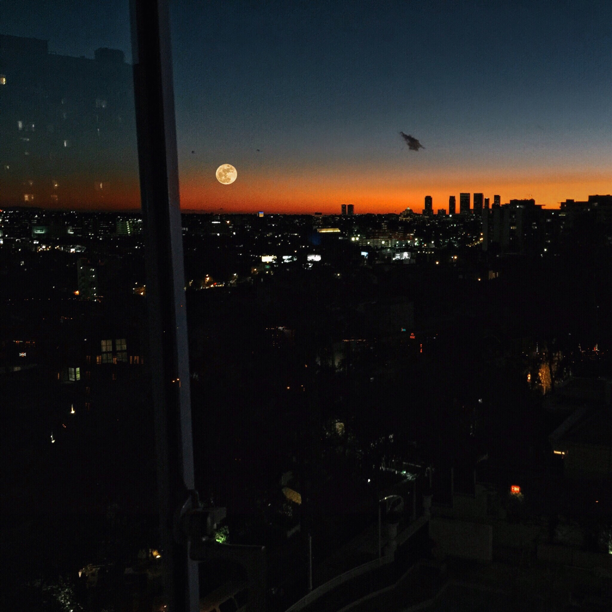 Full Moon in Hollywood by Margaret Zhang